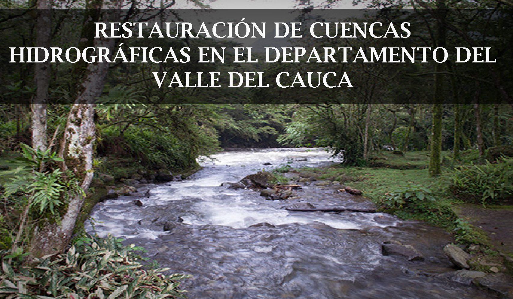 Restauración de Cuencas en el Departamento del Valle